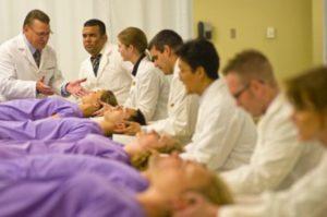 Deepdene Chiropractic & Myotherapy Clinic Chiropractic training